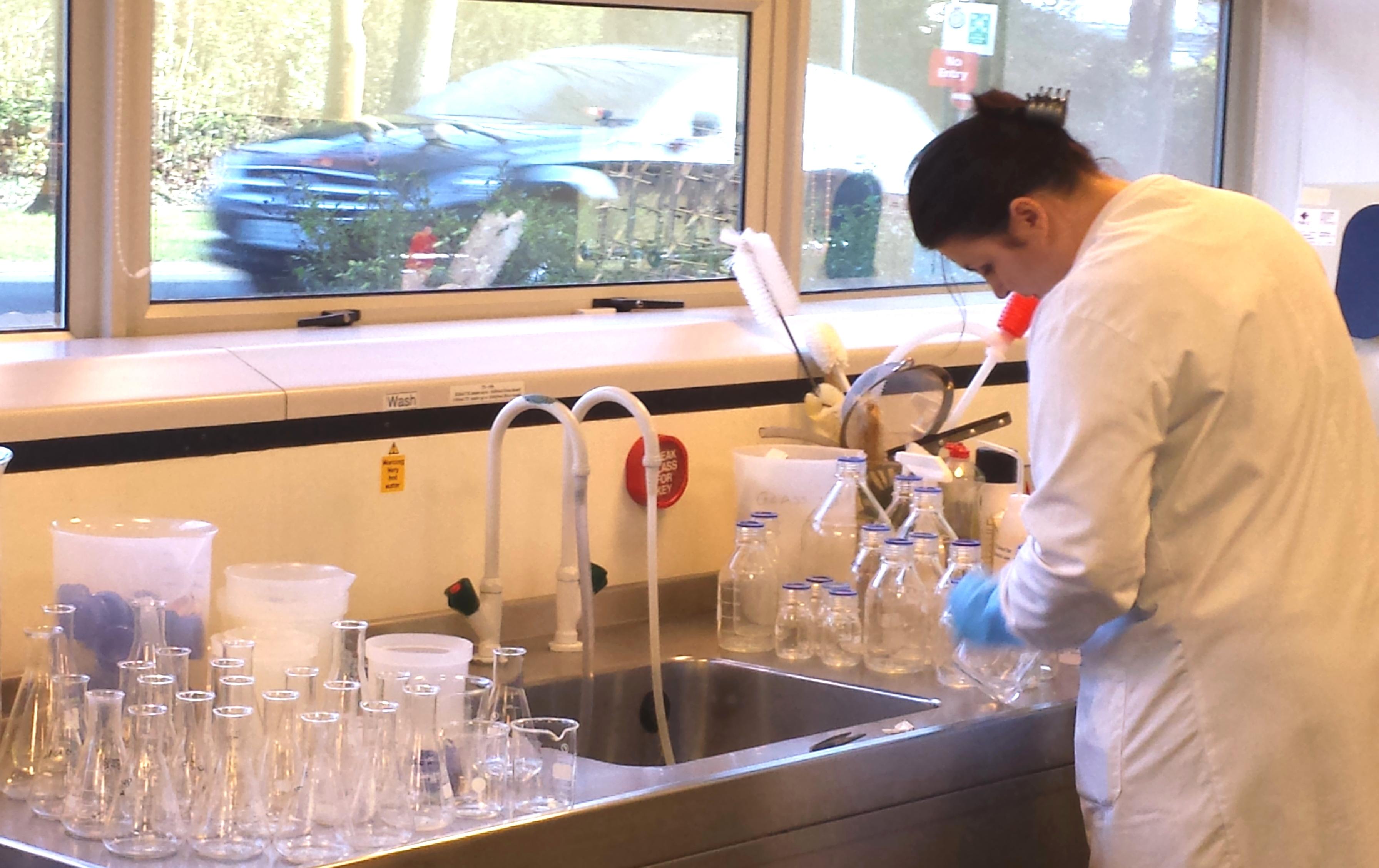 Preparing the glassware